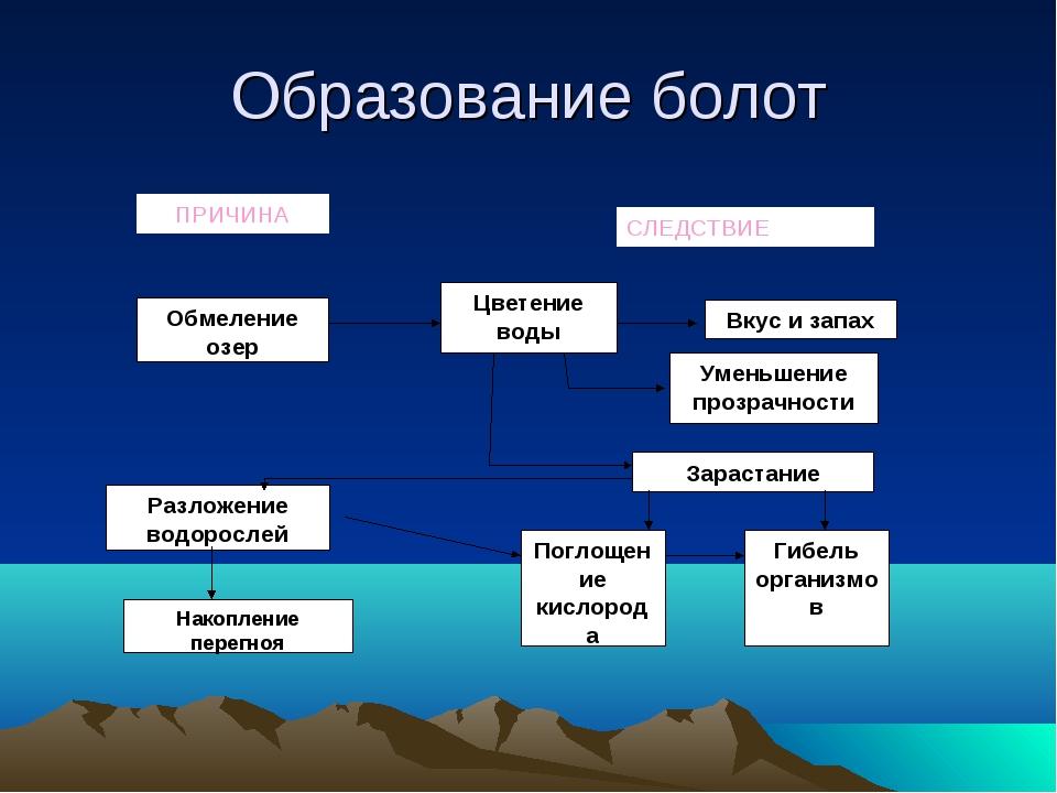 Образование болот ПРИЧИНА СЛЕДСТВИЕ Обмеление озер Цветение воды Вкус и запах...
