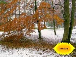 Поле черно-белым стало: Падает то дождь, то снег. А еще похолодало - Льдом ск