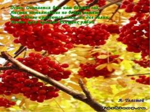 Осень. Осыпается весь наш бедный сад, Листья пожелтевшие по ветру летят; Лишь