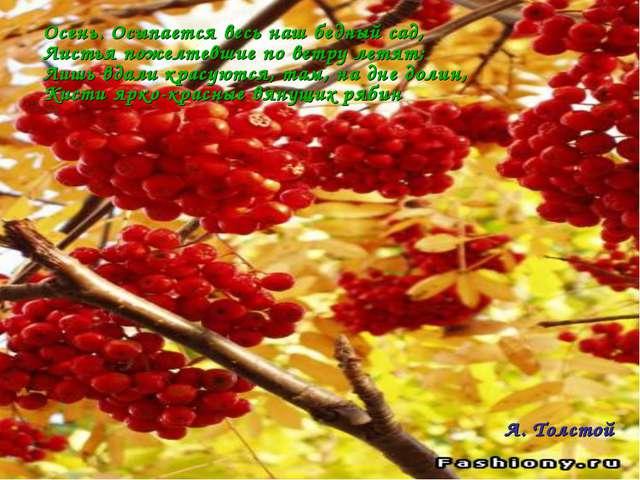 Осень. Осыпается весь наш бедный сад, Листья пожелтевшие по ветру летят; Лишь...