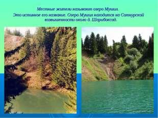 Местные жители называют озеро Мушил. Это истинное его название. Озеро Мушил н