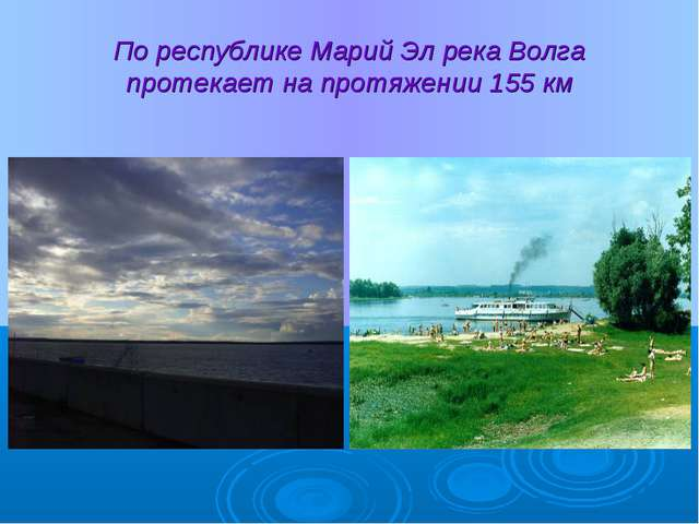 По республике Марий Эл река Волга протекает на протяжении 155 км