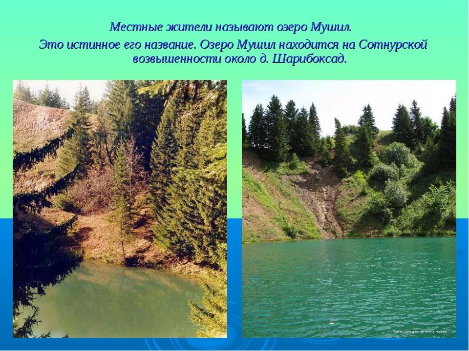 Местные жители называют озеро Мушил. Это истинное его название. Озеро Мушил н...