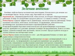 Зеленая аптека: Лечебные свойства березы исключительно многогранны. Использую