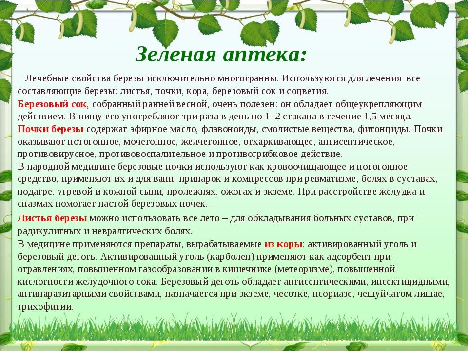 Зеленая аптека: Лечебные свойства березы исключительно многогранны. Использую...