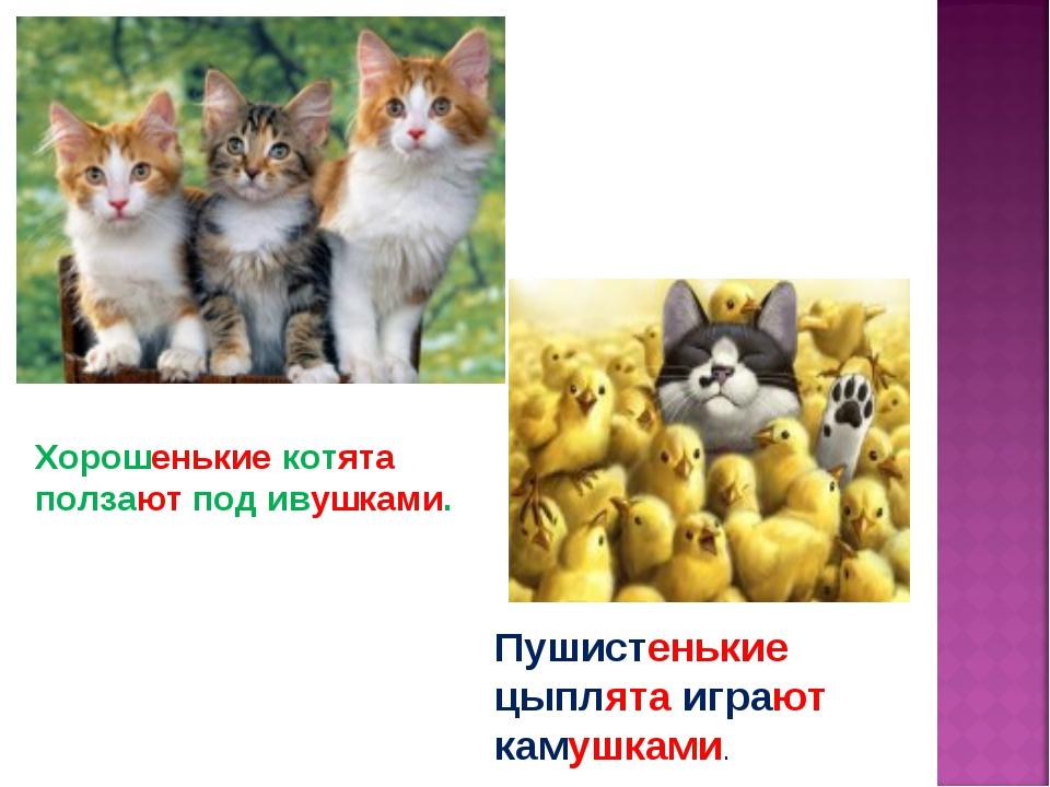 Хорошенькие котята ползают под ивушками. Пушистенькие цыплята играют камушками.