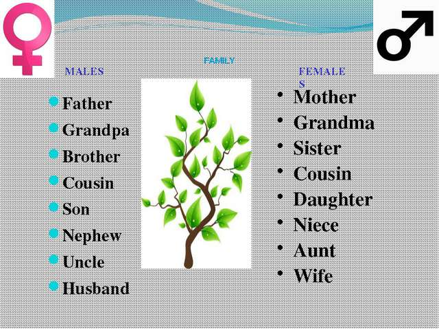 FAMILY Father Grandpa Brother Cousin Son Nephew Uncle Husband Mother Grandma...