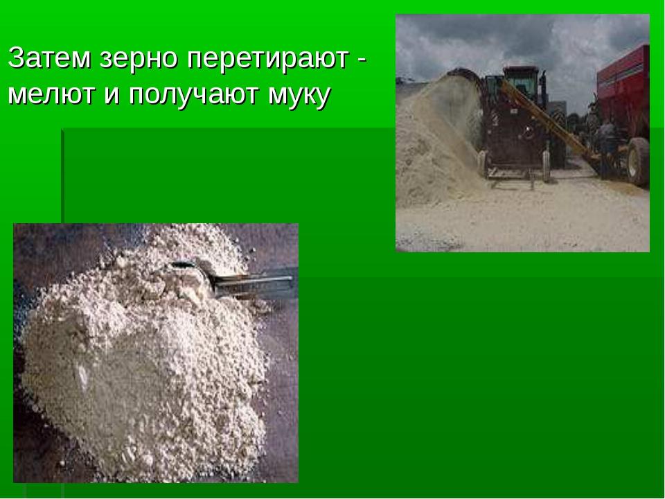 Затем зерно перетирают - мелют и получают муку