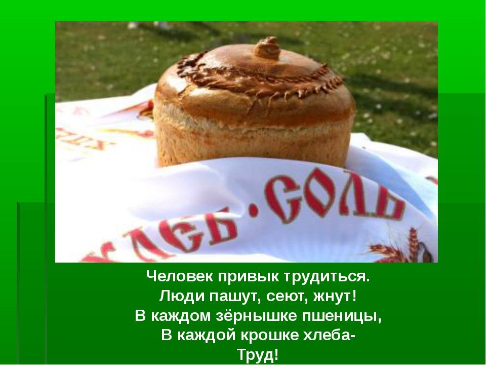 Человек привык трудиться. Люди пашут, сеют, жнут! В каждом зёрнышке пшеницы,...