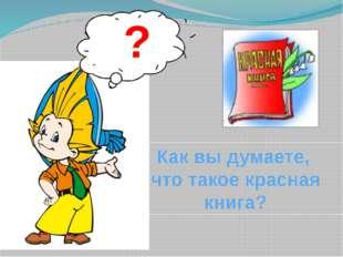 ? Как вы думаете, что такое красная книга?