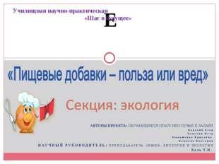Е АВТОРЫ ПРОЕКТА: ОБУЧАЮЩИЕСЯ ОГАОУ НПО ПУ№50 П.ЗАЛАРИ Карелин Егор Ламухин П