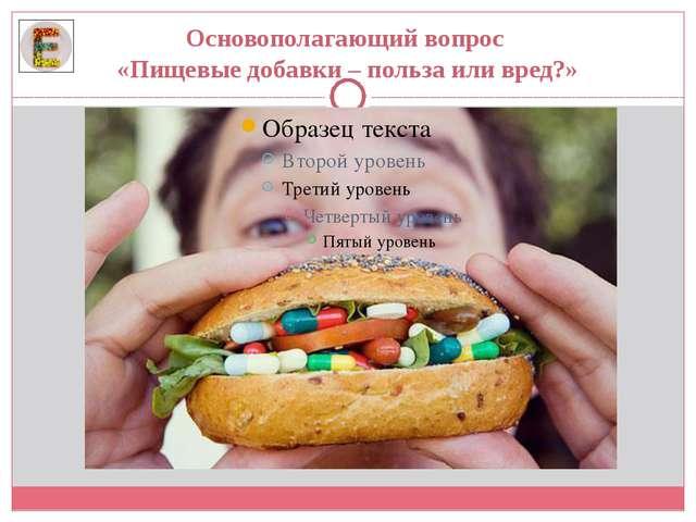 Основополагающий вопрос «Пищевые добавки – польза или вред?»