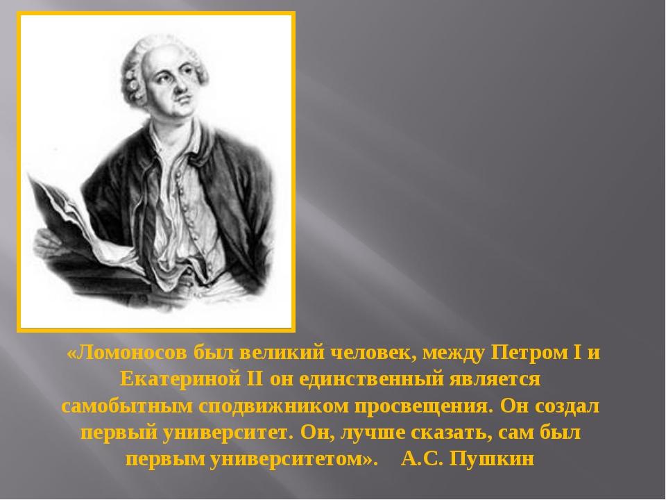 «Ломоносов был великий человек, между Петром I и Екатериной II он единственн...
