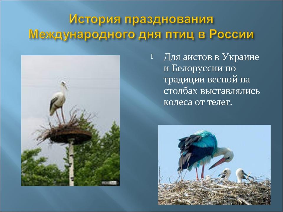 Для аистов в Укpаине и Белоpуссии по тpадиции весной на столбах выставлялись...