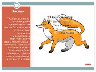 Исконно русское слово, происходящее от народного «лягуха», «лягуша»- «бедро»