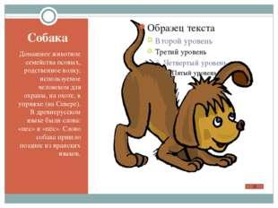 В кроссворде спрятались названия животных. Найди их. Выпишите словарные слова