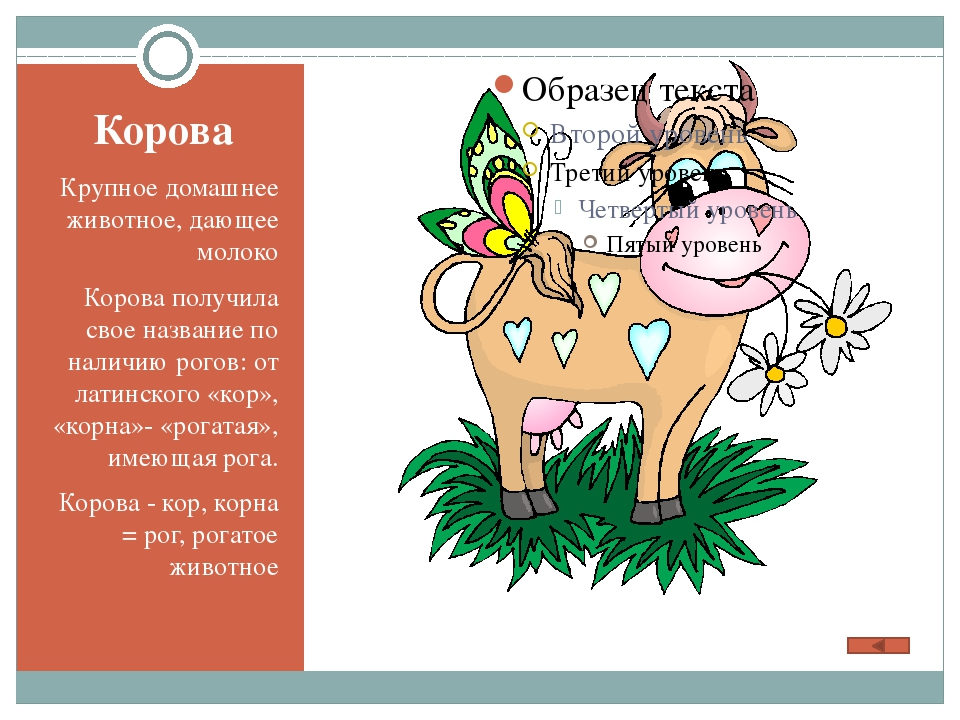 Корова Крупное домашнее животное, дающее молоко Корова получила свое название...