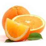 http://tuyendung.export2global.net/thenorth/data/2011/11/orange.jpg
