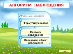 Слайд 4 Провожу наблюдение Формулирую вывод Определяю объект наблюдения
