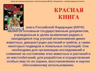КРАСНАЯ КНИГА Красная книга Российской Федерации (ККРФ) является основным гос