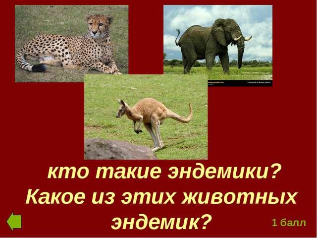 кто такие эндемики? Какое из этих животных эндемик? 1 балл