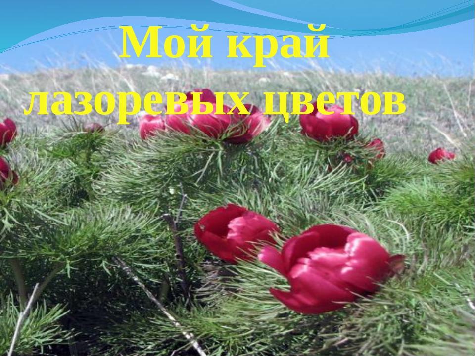 Мой край лазоревых цветов