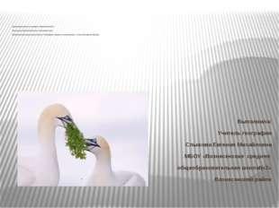презентация урока по разделу «Природа Земли» Тема урока «Растительный и живо