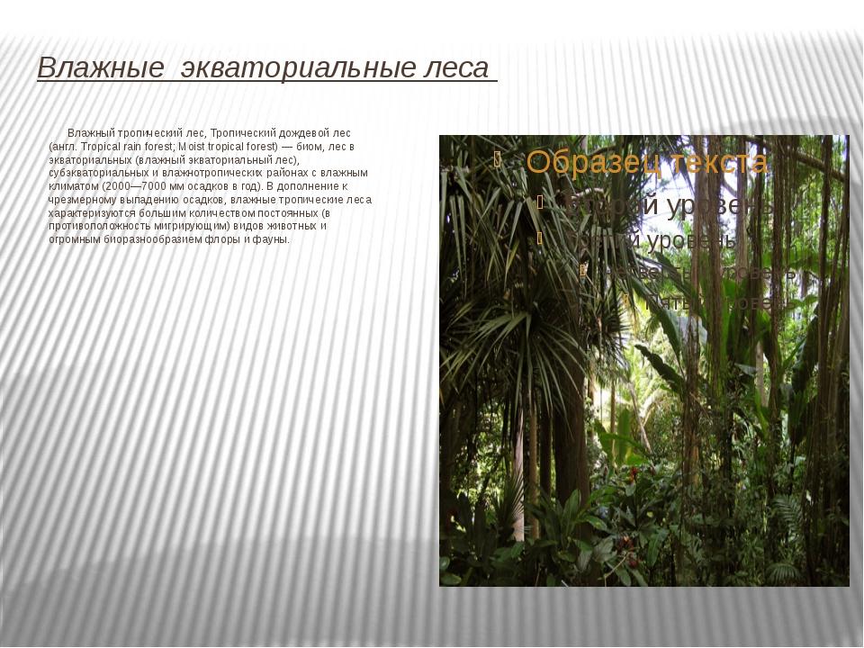 Влажные экваториальные леса Влажный тропический лес, Тропический дождевой лес...