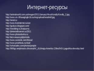 Интернет-ресурсы http://animalworld.com.ua/images/2011/January/Akva/Korally/K