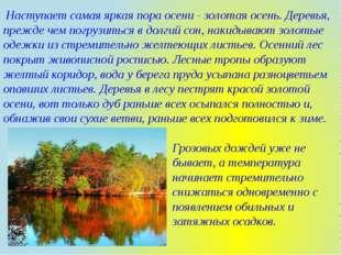 Наступает самая яркая пора осени - золотая осень. Деревья, прежде чем погруз