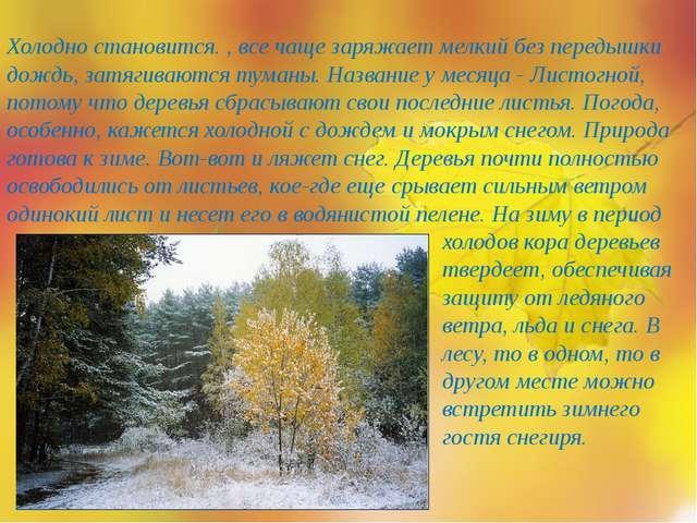 Холодно становится. , все чаще заряжает мелкий без передышки дождь, затягиваю...