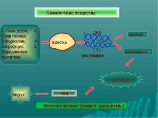 Химические вещества 1. Соли ртути; 2. Соли свинца; 3.Формалин; 4. хлороформ;