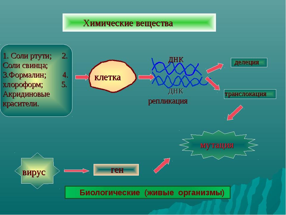 Химические вещества 1. Соли ртути; 2. Соли свинца; 3.Формалин; 4. хлороформ;...