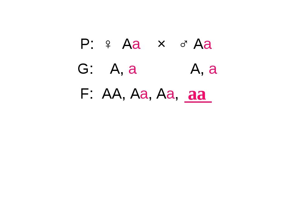 P: ♀ Аа × ♂ Аа аа G: А, а А, а F: АА, Аа, Аа,