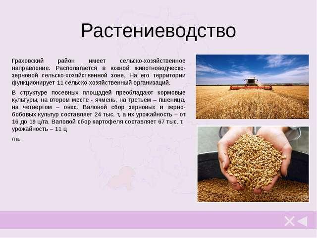 Производственная сфера С 2001 года в Граховском районе отмечается положительн...