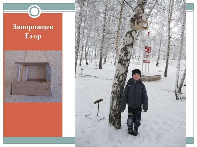 Запорожцев Егор