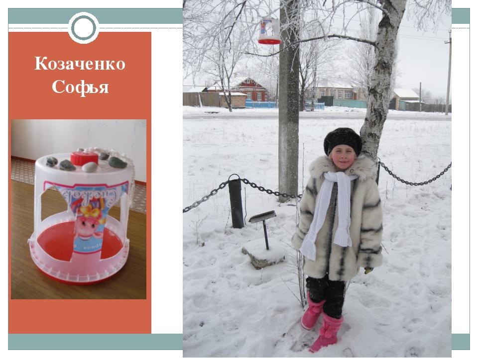 Козаченко Софья