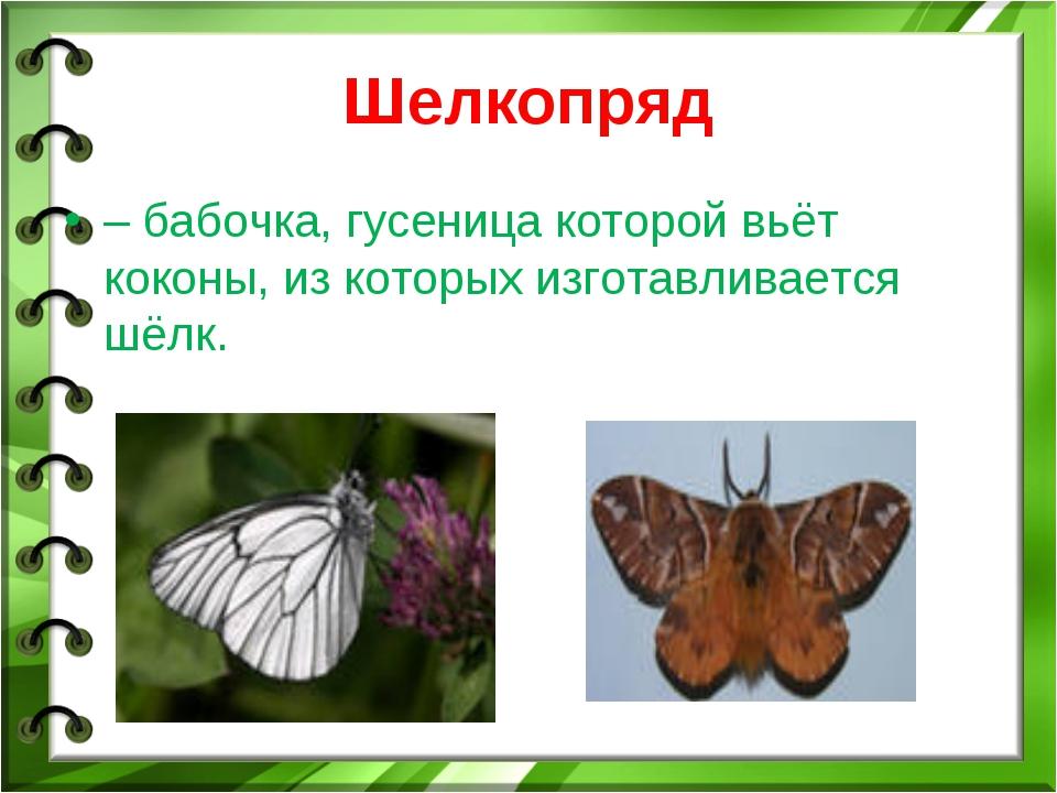 Шелкопряд – бабочка, гусеница которой вьёт коконы, из которых изготавливается...