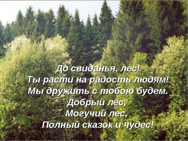 До свиданья, лес! Ты расти на радость людям! Мы дружить с тобою будем. Добрый...