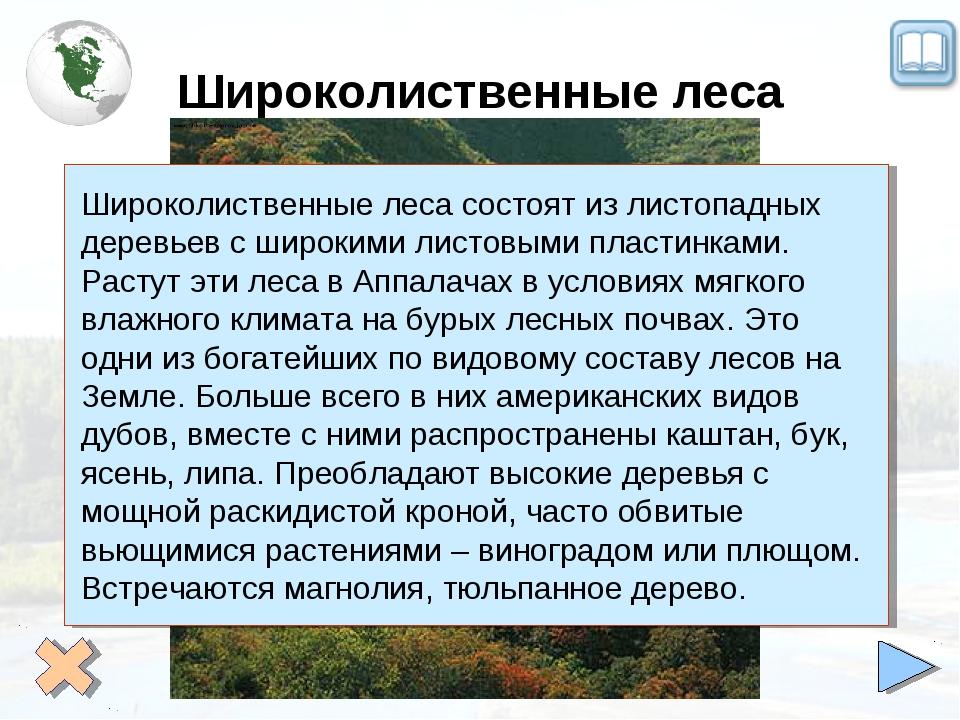 Широколиственные леса Широколиственные леса состоят из листопадных деревьев с...
