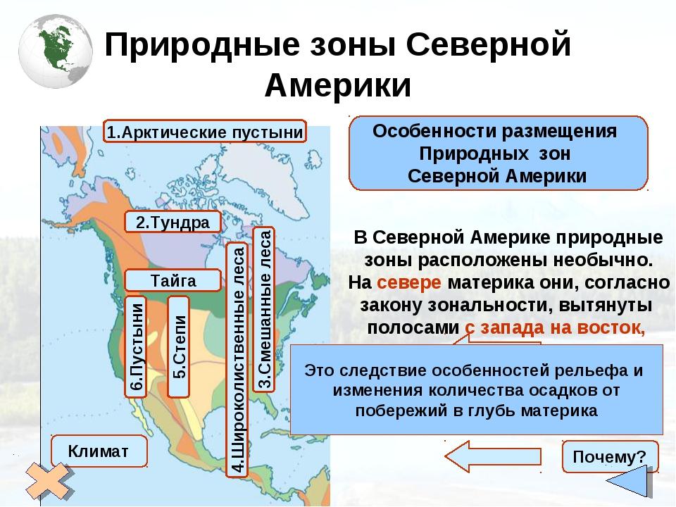 Природные зоны Северной Америки Особенности размещения Природных зон Северной...