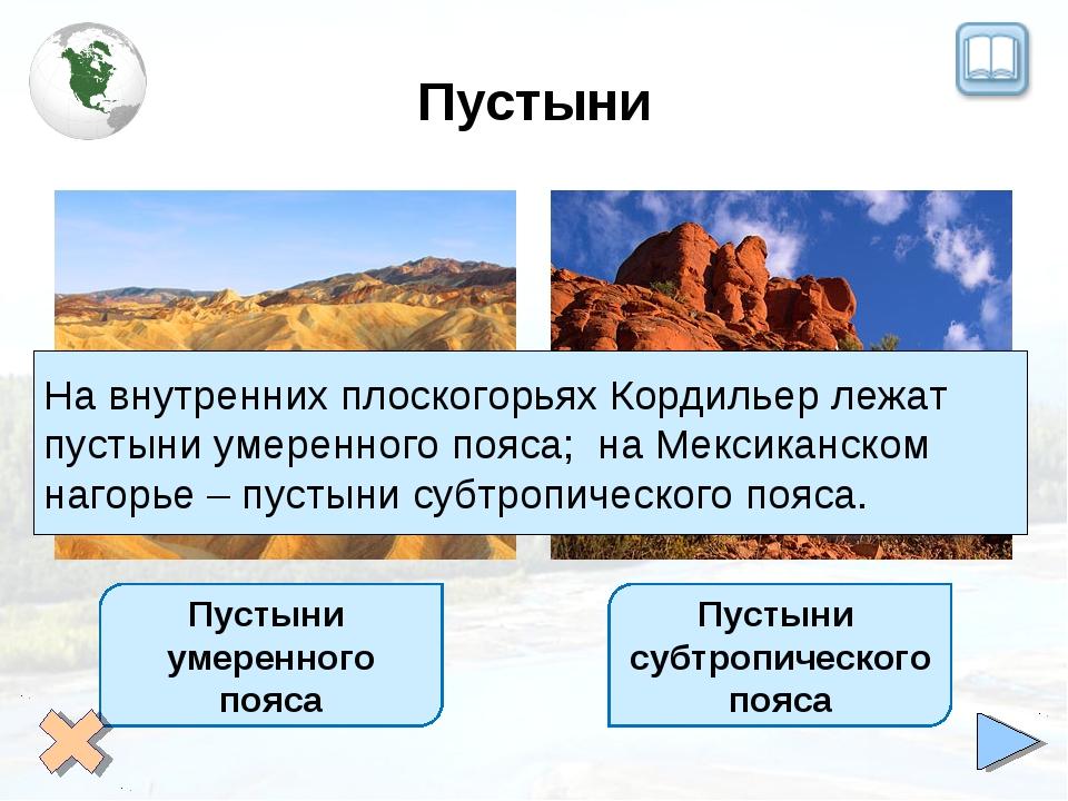 Пустыни Пустыни умеренного пояса Пустыни субтропическогопояса На внутренних п...