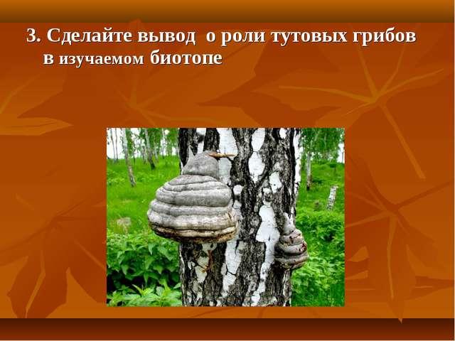 3. Сделайте вывод о роли тутовых грибов в изучаемом биотопе
