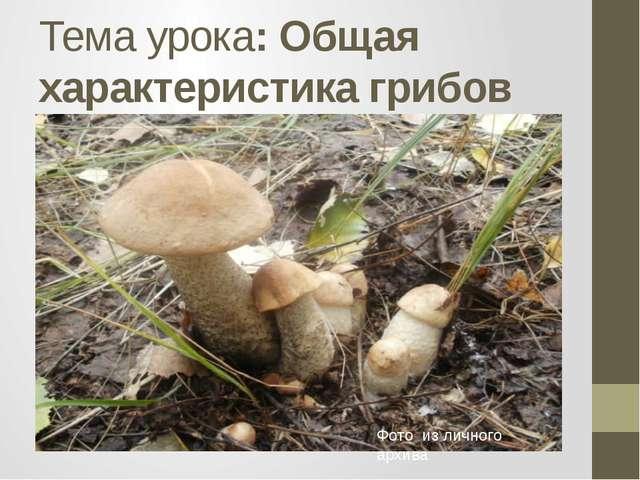 Тема урока: Общая характеристика грибов Фото из личного архива