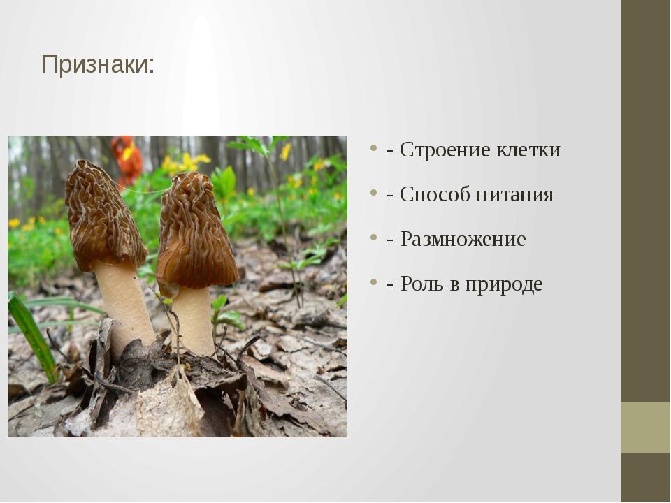 Признаки: - Строение клетки - Способ питания - Размножение - Роль в природе