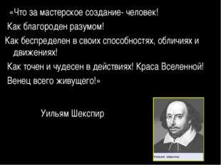 «Что за мастерское создание- человек! Как благороден разумом! Как беспределе