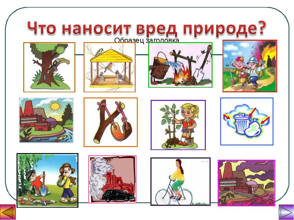 Берегите природу картинки для детей, поздравление днем рождения