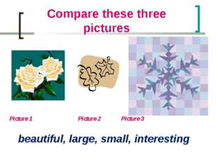 Compare these three pictures Picture 1 		 Picture 2 	 Picture 3 beautiful, la