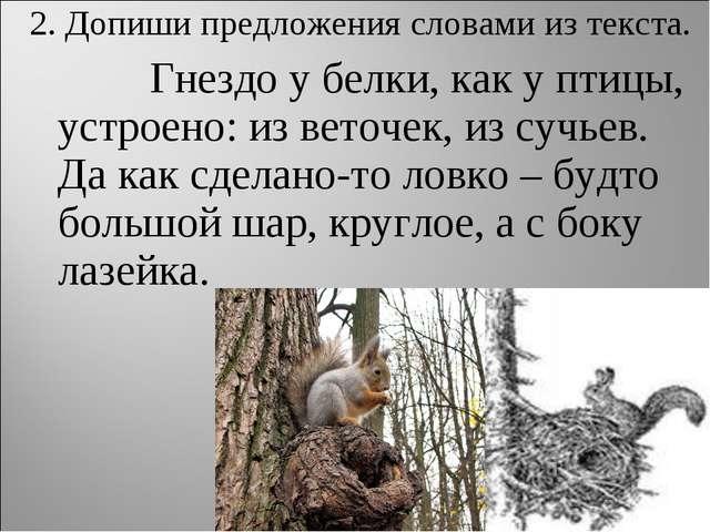 2. Допиши предложения словами из текста. Гнездо у белки, как у птицы, устр...