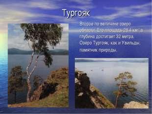 Тургояк Второе по величине озеро области. Его площадь 26,4 км.2,а глубина дос